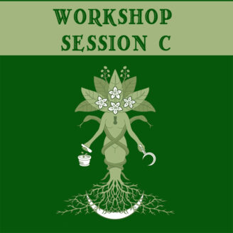 Workshop Session C (one per session permitted)